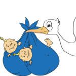 Storch mit Babys